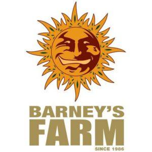 Barney farm