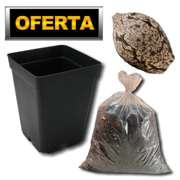 PROMO AUTOMATICA COMBO COMPLETO
